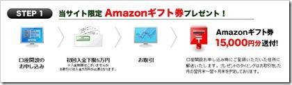dmmamazon1.jpg