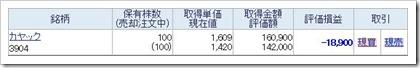 カヤック(3904)含み損