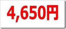 グレイステクノロジー(6541)IPO直前初値予想