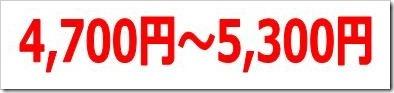 SYSホールディングス(3988)IPO初値予想