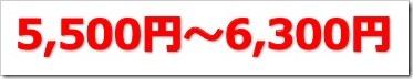 アジャイルメディア・ネットワーク(6573)IPO初値予想