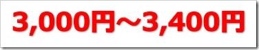 ZUU(4387)IPO初値予想