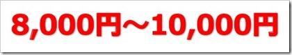 サーバーワークス(4434)IPO初値予想