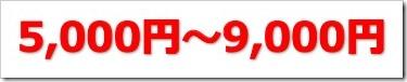 リビン・テクノロジーズ(4445)IPO初値予想