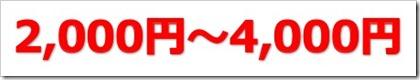 ステムリム(4599)のIPO(新規上場)初値予想とIPO幹事配分数!