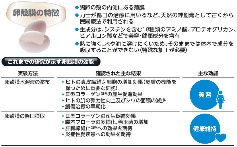 アルマード(4932)IPO卵殻膜効能