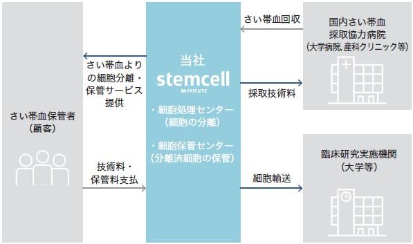 ステムセル研究所(7096)IPO事業系統図