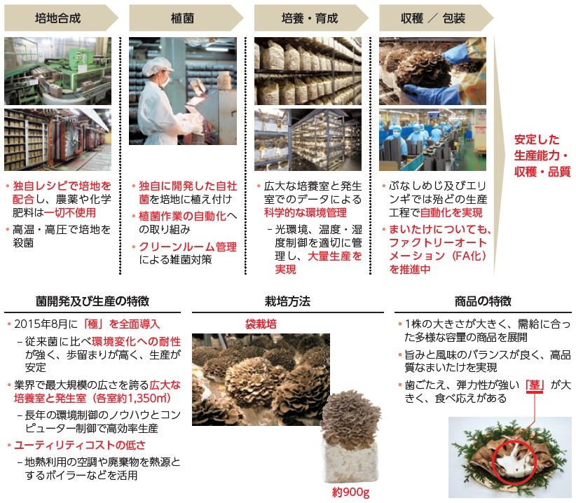 雪国まいたけ(1375)IPOきのこ生産及び商品の特徴