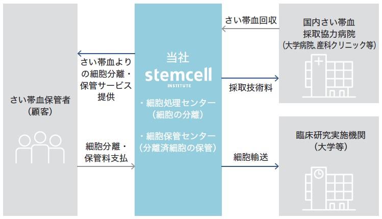 ステムセル研究所(7096)IPO事業系統図2