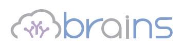 ブレインズテクノロジー(4075)IPO上場承認